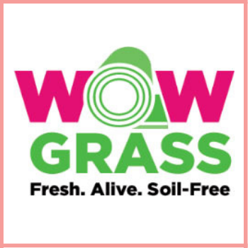 wow grass image